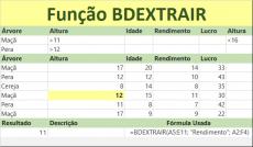 Função BDEXTRAIR – Banco de dados do Excel