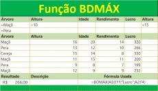 Função BDMÁX do Excel retorna maior número