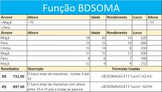 Função BDSOMA Banco de Dados Excel